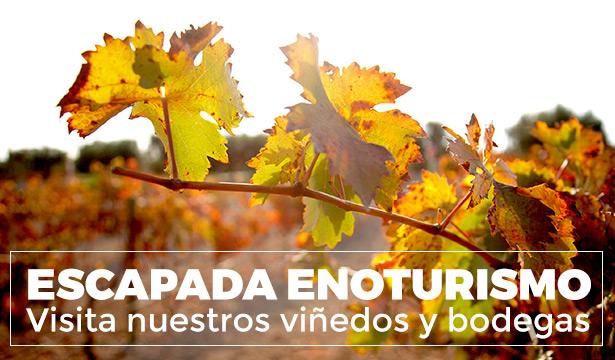 Visita nuestras bodegas y viñedos - Enoturismo Bodega Santa Margarita